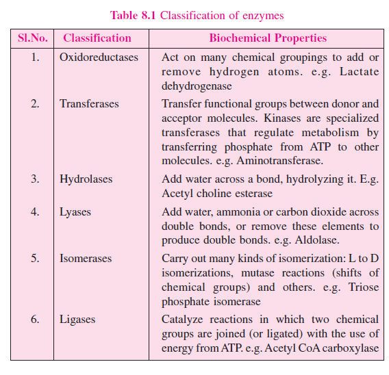 lactate biochemistry essays Biochemistry question bank is the list of questions collected from the bsc  essays: (15marks) what are  lactate dehydrogenase.
